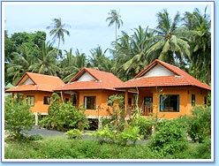 Houses for rent: One Bedroom Bungalows
